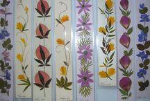 Pressed Flowers - Πρεσσαρισμένα Λουλούδια / Συνθέσεις με Πρεσσαρισμένα Λουλούδια
