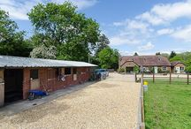 PROPERTY IN HAMPSHIRE / Property with land for sale in Hampshire