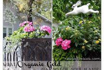 EXTERIOR | Gardening