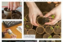 Gardening How-to and Inspiration / Gardening how-to and tips for inspiring landscapes and vegetable gardens.