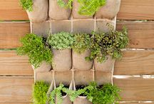 Easy projects for your garden