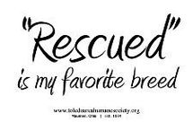 Rescue or Adopt! Your pet will love you!  / by Courtney Wigley