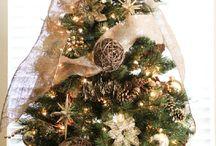 christmas tree / Bradut
