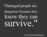 Beautifully Damaged