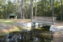 South Carolina State Parks / by Camping Connection