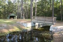 South Carolina State Parks / by Vickie Goddard
