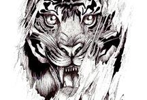 Vlci a kočky