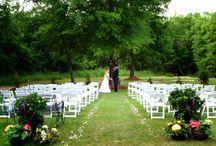 Wedding Ideas / by Dina Labanc