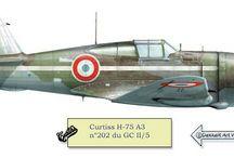 Color Profile Armée de l'Air