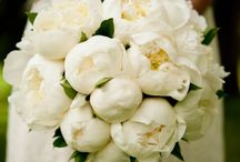 so lovely ... wedding bouquet / True elegance lies in simplicity #wedding #flowers
