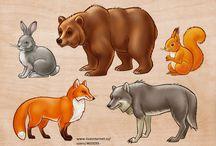 Vado élő állatok