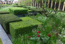 Jardins minimalistas