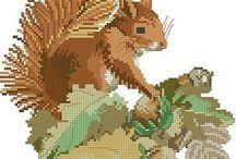 Cross Stitch - Squirrels