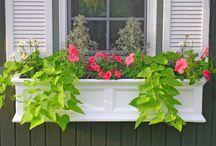 Window Planters / Beautiful flower boxes for windows to enhance your balcony, porch or patio. #Veradek #Mayne #VegTrug