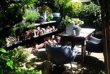 Alles für den Garten / Garten, Schwimmbäder, Fußwege, Landscaping, Outdoor-Design, Pflanzen und mehr. Alles zum Thema Garten! / by UNGER-Park Musterhausausstellungen