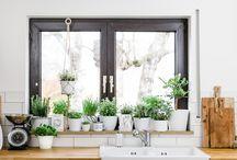 Fensterbank Garten