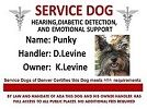 (Service) Dog Information / Information for dog owners;  mainly to combat scams and misinformation about service dogs. . For example, one trainer claims a service dog needs  600 hours of training; Guide dogs yes; comfort dogs, no.  At the same time, buying a certification, which can be done on line for less than $200 is unethical if you don't know the regulations. Moreover, it can leave you open to charges of fraud and a law suit.