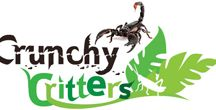 Edible Insects - Nutrition