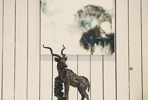 Kudu - sculpture / Bronze sculptures made by Hamish Mackie, all signed, dated and numbered editions