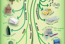 Eco schools notes and stuff