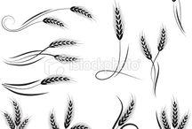 Wheat tatto