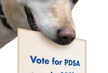 Vote for PDSA to win £50k / We need your help! PDSA is in the running to #win £50,000 of funding to help us save more pets' lives! But we need your vote to help ensure we receive the much-needed funds from People's Postcode Lottery Simply visit www.votethatcounts.org/charity/pdsa and register your vote for PDSA today. Happy voting! Team PDSA  / by PDSA