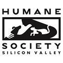 Humane Society of Silicon Valley / Activities and animals at the Humane Society of Silicon Valley / by Dana Spinney
