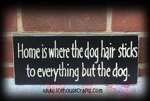 The Dog! :)