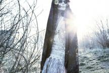 Bones  / by Helena Gaytán Monroy