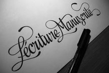 Typography / by Luis Guillen