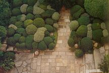 Enchanted Garden | Fairytale