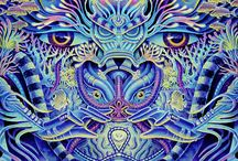 Psychedelia / Psychedelia of all kinds
