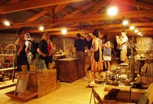 Wine Tasting Tours / Are you a wine lover? Do you love enjoying new varieties or savouring vintage flavours?