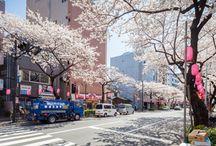 Japon / Tout ce qui a attrait à ce beau pays qu'est le Japon (^.^)