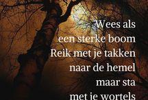 Tekst bomen