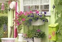 Backyard Shed ideas / by Carol Lilley