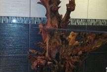 meble / drzewo akacjowe