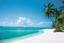 Holidays in Cayman Islands / Holidays Around the World Information - http://www.holidays-and-observances.com/holidays-around-the-world.html