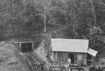 Illawarra's History