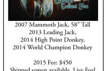 2015 Jack Index / Looking for a jack to breed to, or to buy a jack? Then bookmark this page - it contains all the information you need, gathered in one handy spot.  Want your jack or farm to be featured in the online version? Visit mulesandmore.com/jackinfo.html It's not too late to be added to the online jack index, which will be promoted throughout the year on our Facebook page and website.