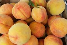 Shady Grove Farmers' Market / Come out to the farmers' market for fresh local produce, prepared food vendors, artisans and more... Wednesdays 11 am to 2pm    May to October 9601 Broschart Road, Rockville, MD 20850 Johns Hopkins Univ Rockville Campus: Corner of Key West Ave and Broschart Road.