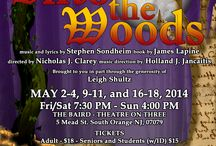 interACT Theatre - IntoTheWoods / interACT Theatre Production: This dark comedic musical is one of Sondheim's most popular works! The story follows the wishes of a baker and his wife, Cinderella, and Jack. Cursed by a wicked witch, they set off to break the curse. Consequences occur after their wishes are granted.