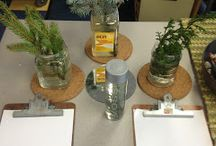 Kindergarten - nature and environment