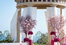 Wedding Ideas / by Haylee Causey