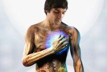 Funzione dei nostri organi