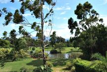 Costa Rica golf course property for sale