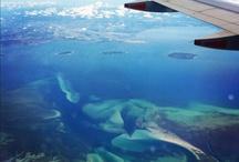 Bird's eye view of the Sunshine Coast