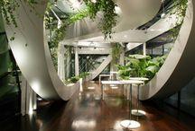 Tendance modernisme et plantes