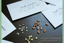 Plantes : Semences / Seeds saving