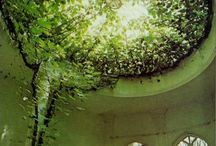 Dream house and garden ideas